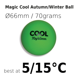 Magic Cool Autumn/Winter Ball
